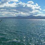 ՀՀ Վարչապետին Սևանա լճի հիմնահարցի լուծման հեռանկարային առաջարկ է ներկայացվել